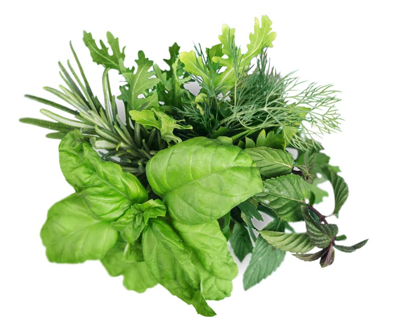 Herbs can help you decrease your salt intake.